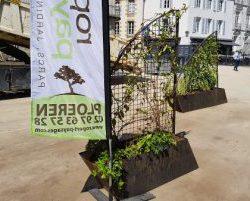 Installation Jardins Éphémères Vannes 2017 Ropert Paysages