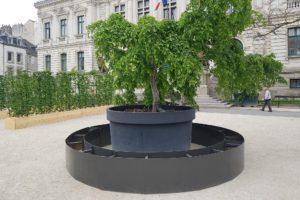 Vannes Jardins Éphémères 2018 plant